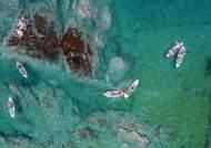 [커버스토리] 서핑·스노클링·카누잉…하와이·발리 안 부럽죠