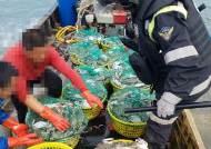 인천해경, 서해 꽃게 불법조업 中어선 1척 나포 생생현장
