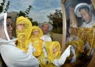 [서소문 사진관] 안전한 벌통 '허니팩토리'에서 꿀벌과 교감하세요