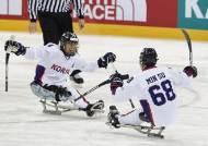 장동신 결승골, 아이스슬레지하키 세계선수권 2연승