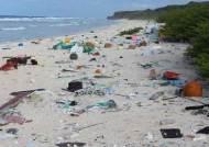 '남태평양의 보석' 산호섬에 플라스틱 쓰레기 3800만점