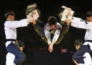 평창올림픽 수놓을 남-북한 태권도 시범, 이렇게 다르다