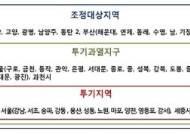 [8·2 부동산대책] 서울,과천,세종 다주택자 양도세 중과… 부동산 투기와 전쟁 본격화