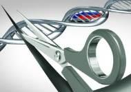 2030 돌연사 유발 DNA, 유전자 가위로 콕 집어 잘라낸다