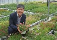 '미스김 라일락' 역수입 못지않는 토종꽃 '코레우리'‥로열티 받는 야생화 만드는 우리꽃영농조합법인
