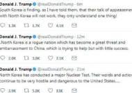 [오역영어] 국내 언론의 트럼프 트윗 해석 논란…they는 남한? 북한?