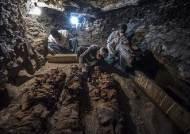 3500년 전 신을 모신 금세공사의 무덤, 이집트 룩소서 발견