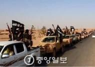 """IS 조직원 가족 중 한국인 있다"" 외신 보도에 외교부 사실관계 나서"