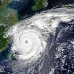 제주도 16일 새벽부터 태풍으로 거센 비바람