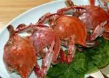 [제철 이 식당]살 꽉찬 가을 <!HS>꽃게<!HE> 맛보려면…대표 맛집 3곳