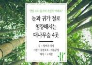 [카드뉴스]댓잎 소리 들으며 죽림욕 어때요? 대나무숲 4곳