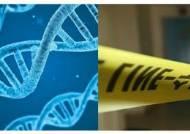 """국과수 """"완전 범죄는 없다…장기미제사건 'DNA 재분석' 완료"""""""