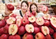 [사진] 항산화 성분 15배 '속 빨간 사과'
