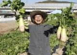 """농부 된 前농식품부 장관 """"깨, 서 말 팔아도 60만원…서글퍼"""""""