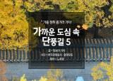 [카드뉴스] 가을 정취 즐기러 가자! 가까운 도심 속 단풍길5