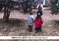 [굿모닝내셔널]제주는 지금 '동백 세상'...겨울꽃 동백 이야기