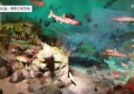 [굿모닝 내셔널]'한반도 생물의 보고'인 인천 국립생물자원관