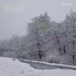 아듀 2017 '지금, 그리고 여기'…영하 날씨에도 스키와 캐롤 분위기 활짝