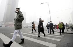 베이징 생쥐족, 뉴델리 대기오염  … 도시는 인류 난제 집합체