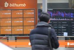 """""""암호화폐 14% 해커들이 훔쳤다…피해액수 1조원 이상"""""""
