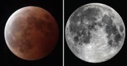 31일 밤하늘에 '블러드문·수퍼문·블루문' 동시 등장…관측 방법은