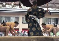 日 뒤흔든 '몽골 혐오' 스모전쟁…시작은 술집 폭행사건