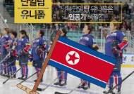 """[카드뉴스] """"남북단일팀 유니폼은 인공기 색깔?"""""""