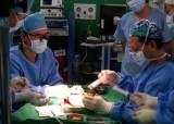 한국 장기 <!HS>이식수술<!HE>, 시작은 늦었지만 세계 정상급 수준