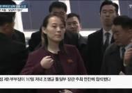 """北 김여정 """"서울이 낯설지가 않습니다""""…'특사' 카드 속내는"""