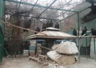 [단독]파주 민통선 장단반도 세계 최대 독수리 월동지 비상