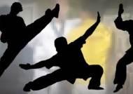 태권도 관장·사범들, 도복 입고 유치원 앞에서 몸싸움