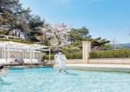 [High Collection] 야외 수영장서 남산 벚꽃도 즐기고 … '어번 아일랜드' 31일 문 엽니다