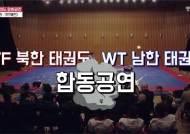 태권도시범단, 16년 만에 방북...다음달 1~2일 평양 공연