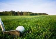 사장의 개인 골프회원권, 법인 경비로 이용할 수 있을까?