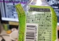 동남아로 폐플라스틱 분산 수출…일본은 작년부터 준비했다