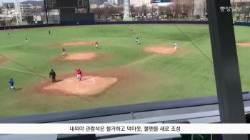 시민 품으로 돌아온 대구야구장 인기 '홈런'