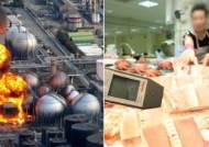 후쿠시마 수산물 한국 들어오나…정부, WTO 판정에 상소