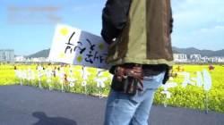 [굿모닝 내셔널] 유채꽃은 제주라구요? 국내 최대 유채단지 낙동강에 있소