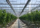 농사일 클릭으로 해결…2022년까지 '스마트팜 혁신밸리' 4곳 만든다