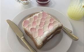 [인스타, 거기 어디?]먹기 아까워…토스트에 내려 앉은 벚꽃