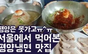 평양은 못가고...서울에서 먹어본 평양냉면 맛집
