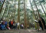 미세먼지 피해 숲으로…놓치기 아까운 <!HS>국립<!HE><!HS>공원<!HE> 문화 행사