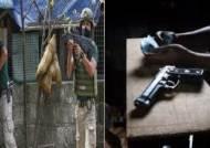 필리핀 기초단체 선거 후보 20명 피살…교민 '안전주의보'
