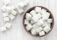 설탕 대신하는 대체감미료 안전한가?