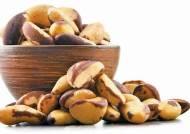 [건강한 가족] 항산화 영양소 셀레늄 함량 1위 암 예방, 뇌 기능 향상 도와