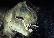 울산 반구대 암각화 주변서 발견된 1억년 전 공룡발자국