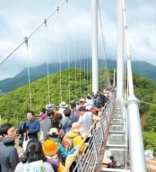 [희망이 꽃피는 경기북부] 한탄강 비경 한눈에 … '하늘다리' 방문객 밀물