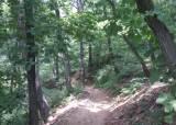 동물원과 숲길이 묘하게 짝 이룬 <!HS>서울대공원<!HE> 둘레길