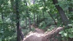 동물원과 숲길이 묘하게 짝 이룬 서울대공원 둘레길