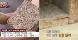 입주 5개월 만에 새 아파트 점령한 벌레떼의 정체